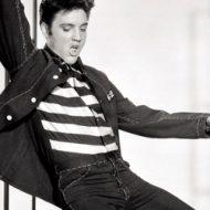 Elvis le pelvis